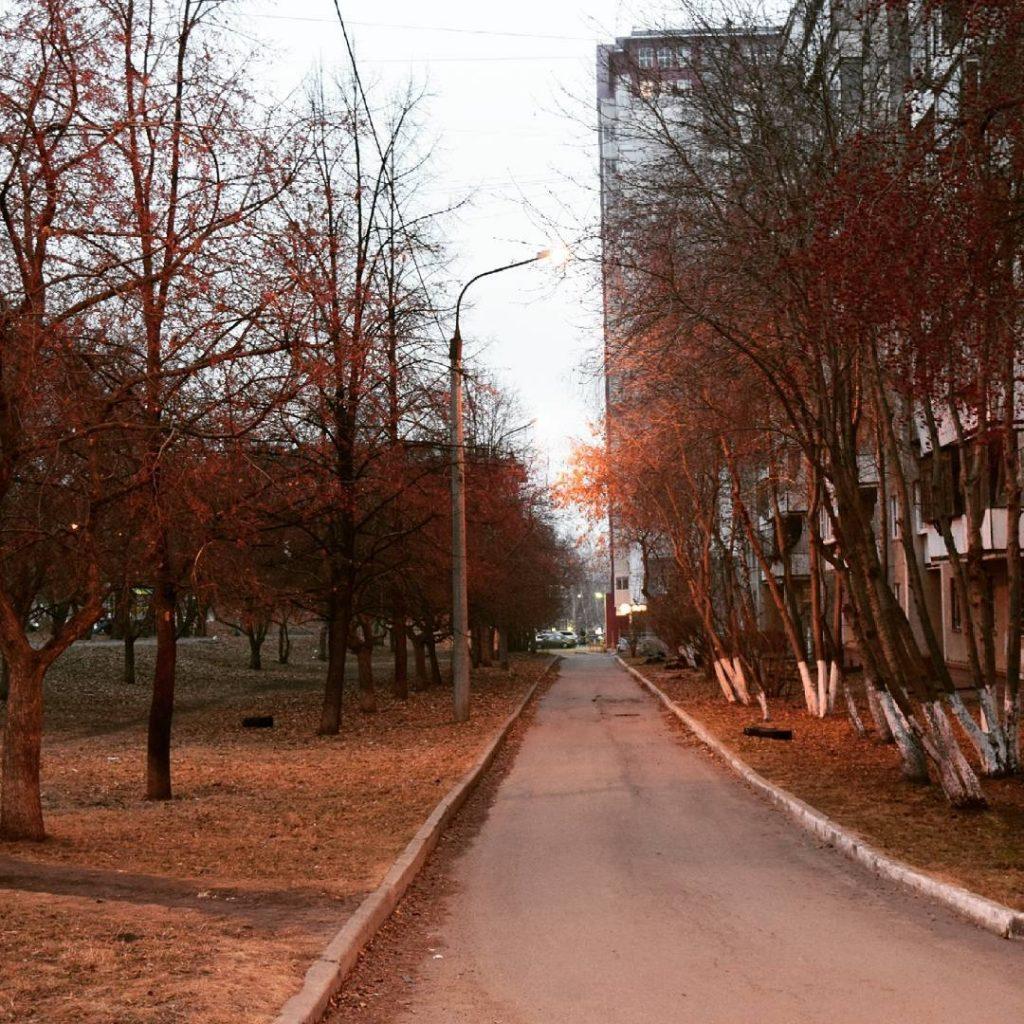 hvostochka-1531487415096