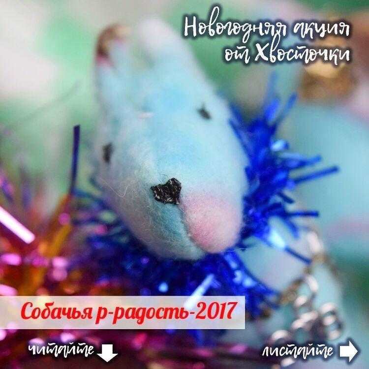 hvostochka--1531903226472